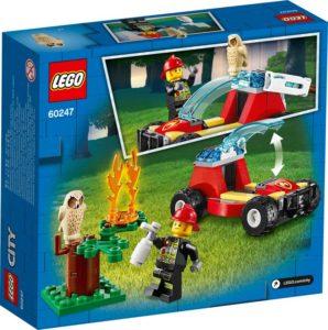 60247 – Πυρκαγιά στο Δάσος